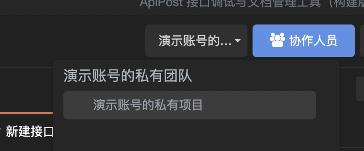 为什么我账户上的项目信息全部清空了,我以前保存过非常多的api测试记录。
